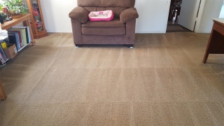 Huntington Beach Carpet Cleaning